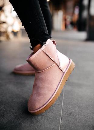 Ugg classic mini pink женские зимние угги сапоги овчина розовые мини