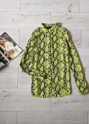 Яркая стильная шифоновая рубашка в змеиный принт рептилия m l