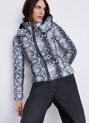 В наличии куртка zara, размер xs