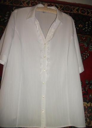 Блузка белая erfo