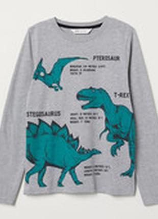 Стильный брендовый реглан с динозаврами