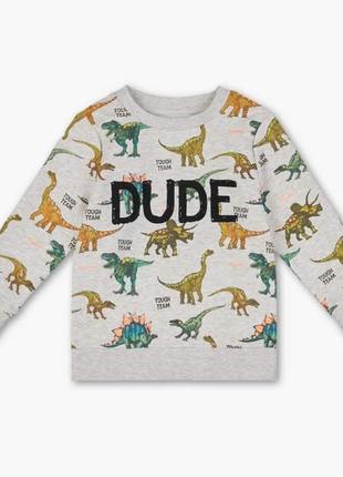 Серый теплый свитшот, толстовка с динозаврами на мальчика, palomino, c&a