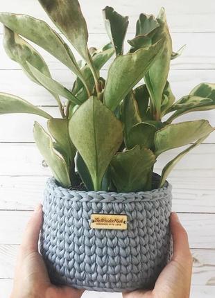 Интерьерная корзинка как вазон под комнатные растения