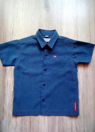 Рубашка, тениска, 3т. акция!!!! 1+1=3