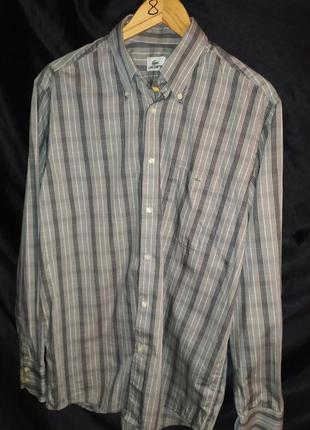 Lacoste рубашка размер l 100% cotton