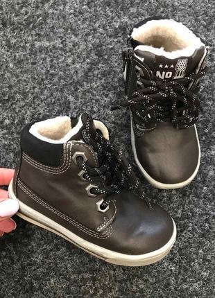 Ботинки tortuga