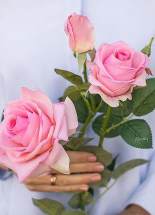 Роза гранд 3+1 соцветия