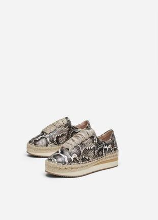 Кожаные туфли ,криперы на платформе в принт uterque