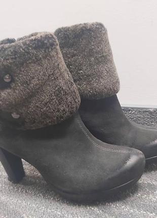 Черевики (ботинки) chester carnaby