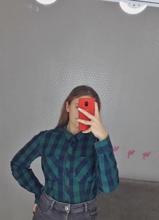 Хлопковая рубашка terranova женская