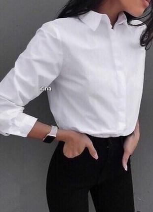 Классическая белая блуза рубашка