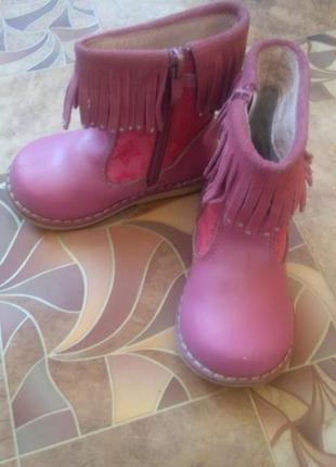 Сапожки демисезонные кожаные сапоги чобітки шкіра демі весна чоботи черевички
