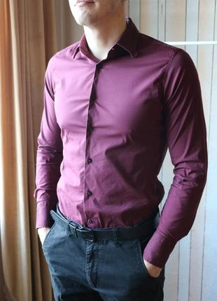 Сорочка basic zara man кольору бордо. superslim fit.