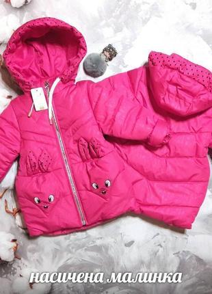 Демісезонна куртка на дівчинку
