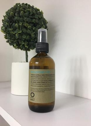 Фітопротеін для волосся oway phytoprotein mist