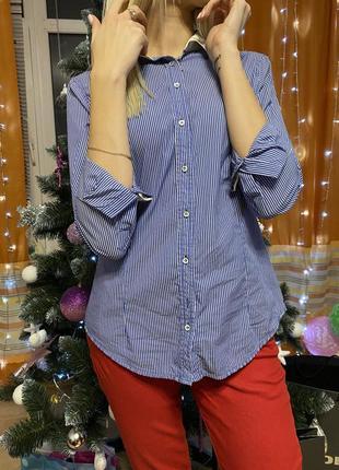 Рубашка синие zara