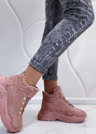 Новые шикарные женские пудровые демисезонное ботинки