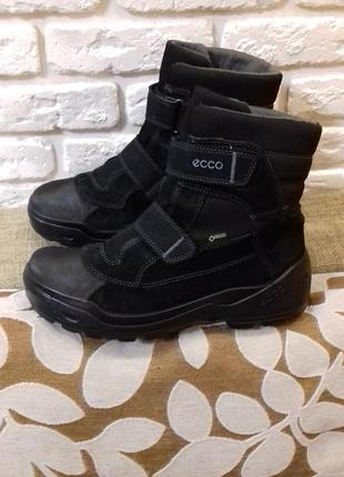 Зимние ботинки ecco с gore-tex размер 38-39 (ст. 24.5 см)