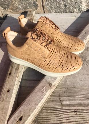 Оригинальные женские кроссовки ecco aquet