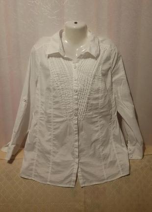 Стрейч котоновая блуза (пог 62-70 см+)