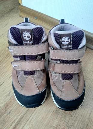 Черевики кросівки трекінгове взуття ботинки кроссовки треккинговая обувь timberland
