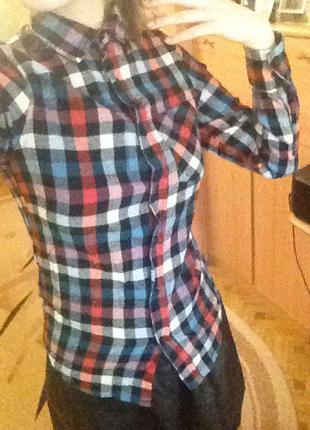 Ярка рубашка