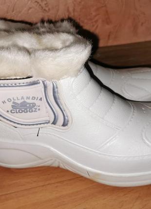 "Зимние ботинки hollandia ""cloggz"""
