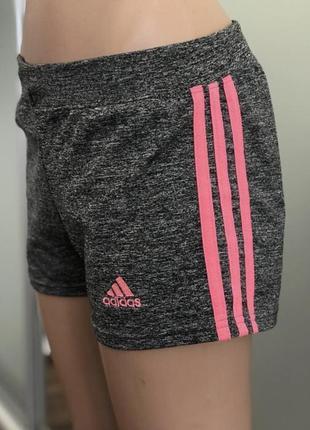 Шорты спортивные для тренировок залп спорта adidas