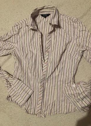 Блуза ostin в новом состоянии размер м