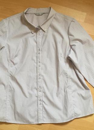 Рубашка батал marks & spenser