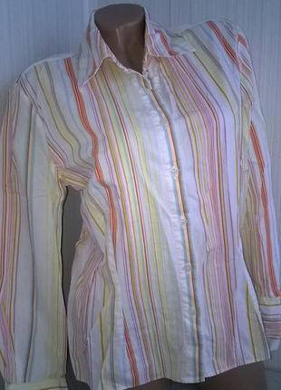 Стильная хлопковая рубашка / блуза / queenspark / 100 % хлопок