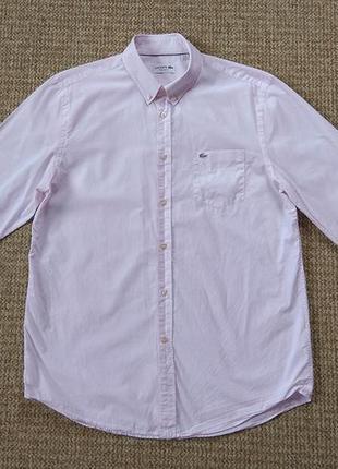 Lacoste рубашка оригинал (l-xl)