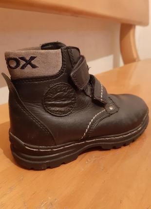 Ботинки демисезонные (внутри шерсть) geox