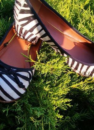 Розпродаж! туфли из натуральной кожы зебры next