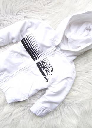 Стильная ветровка куртка кофта с капюшоном kimbaloo