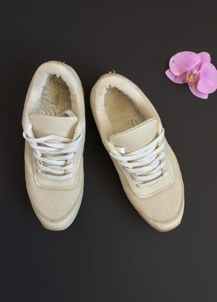Кросівки bershka,розмір 37🕊