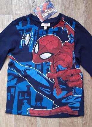 Кофта. ркглан spiderman человек паук