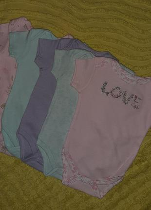 Набор комплект боди 5шт 0-3м laura ashley  для малышей
