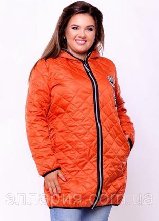 Куртка женская батал демисезонная р 60-52