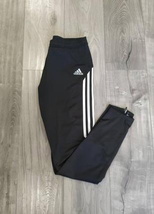 Спортивные штаны, лосины adidas climacool