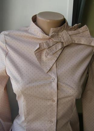 Блуза с бантом пудра, горохи хлопок xs-s-размер