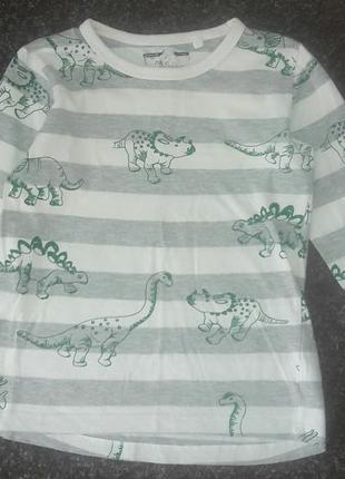 Реглан з динозаврами