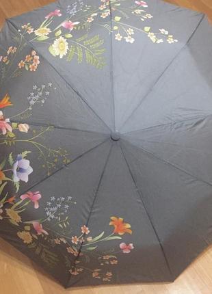 Зонт tulips