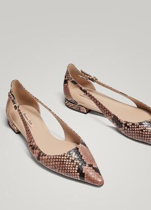 Кожаные балетки,туфли massimo dutti