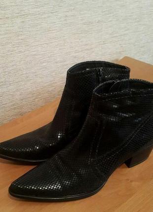 Женские кожаные деми ботинки полусапожки бренд gianni gregori