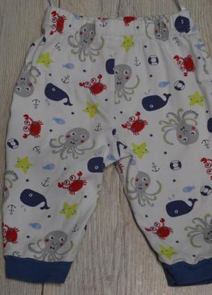 Штаники на малыша2 фото