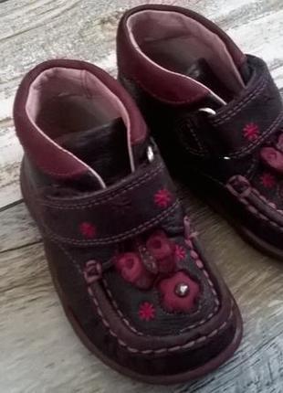 Кожаные мокасины, ботиночки clarks