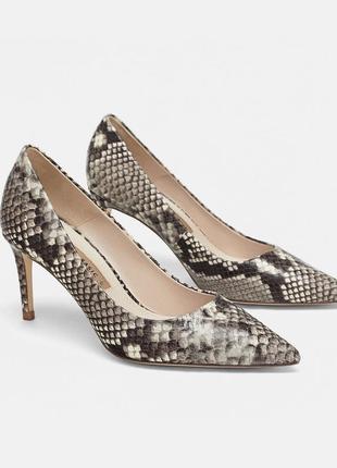 Стильные кожаные  туфли  в змеином принте zara р.42