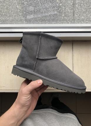 Шикарные серые угги  ugg mini classic gray