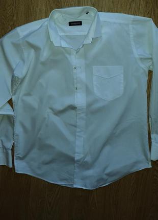 Рубашка baurotti italy
